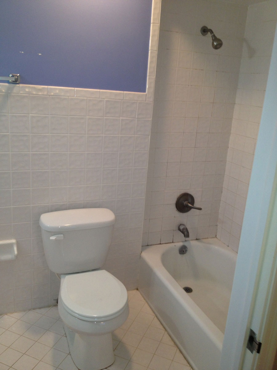 Gallery Larsen Home Improvements - Bathroom remodel orange park fl